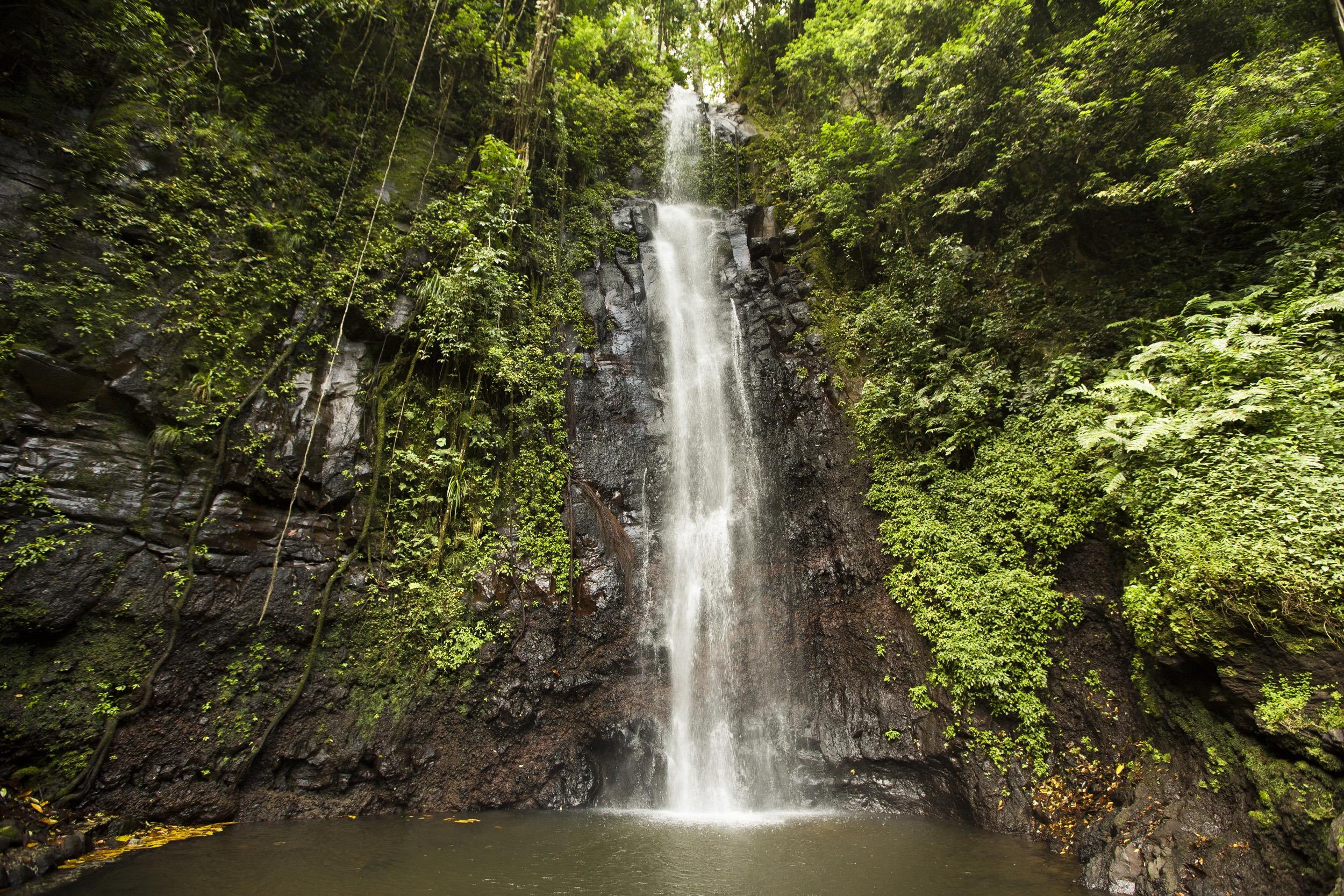 Sentier pédestre à travers forêts et plantations abandonnées et rafraîchissement dans l'une des plus belles cascades de l'île