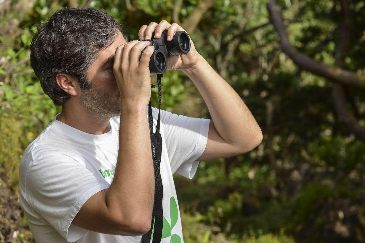 Sur l'île de Principe, observer plus de 20 espèces endémiques de l'archipel au moyen de jumelles