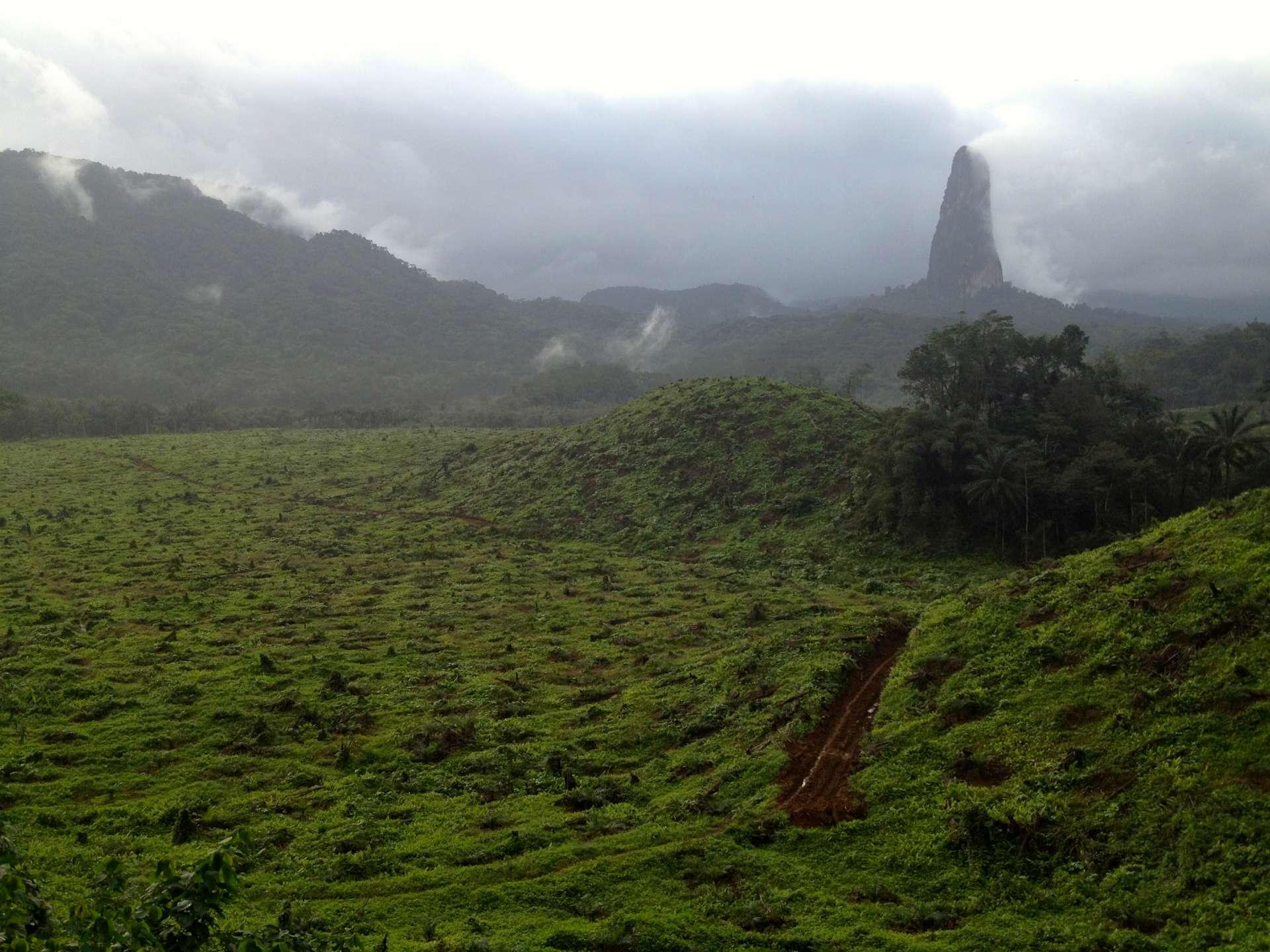 Parc Naturel de Ôbo et vue sur le Pico do Cão Grande, parcourir l'île de Sao Tomé en séjournant dans de petites structures rurales