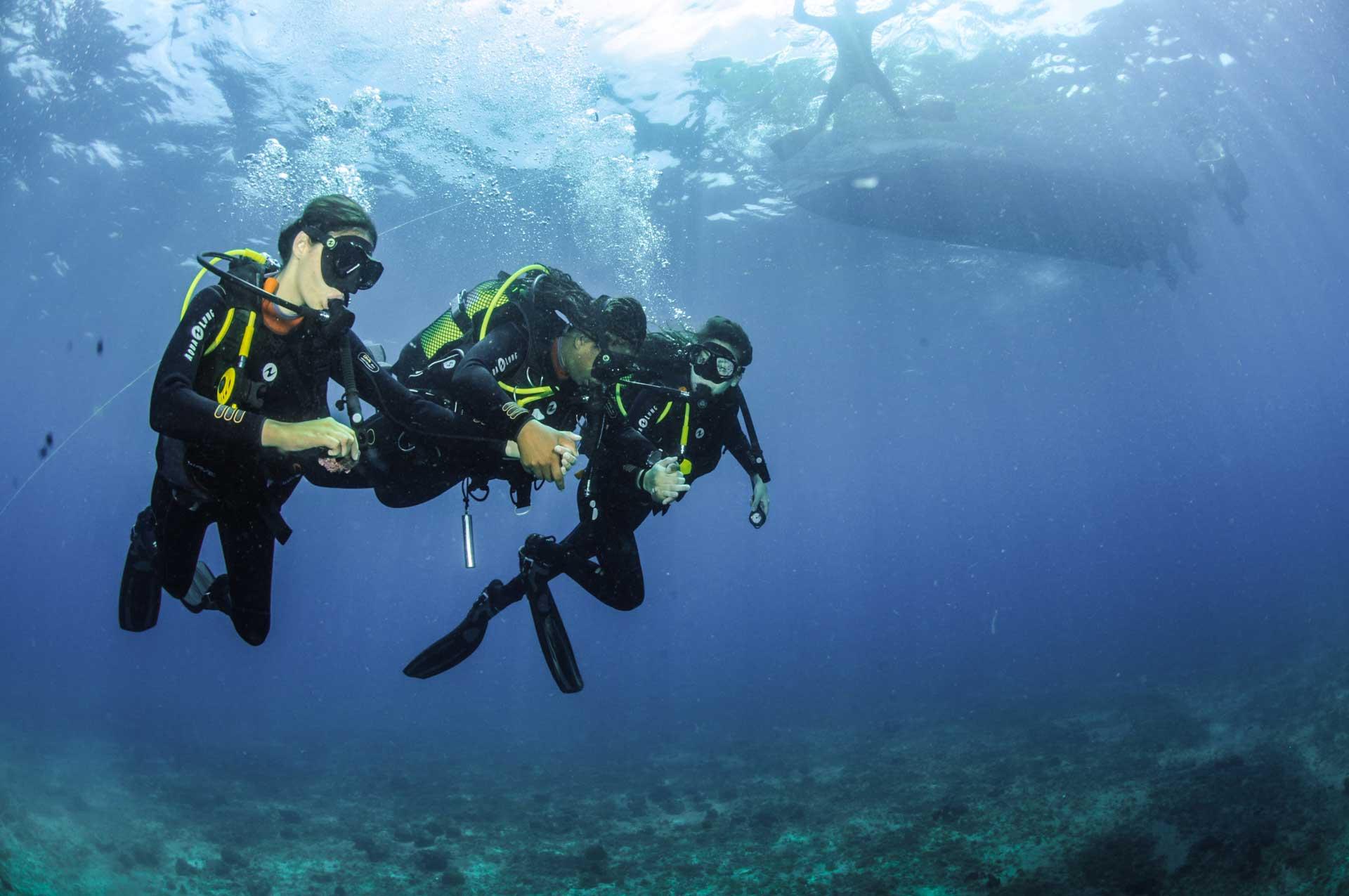 SEP Voyages et son partenaire à Sao Tomé-et-Principe, Costa Norte Fishing & Diving Center: découverte de la richesse des fonds marins de l'archipel